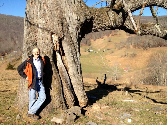 Head measurer David Fernandez stands by tree. Vinegar Hollow visible in the background.