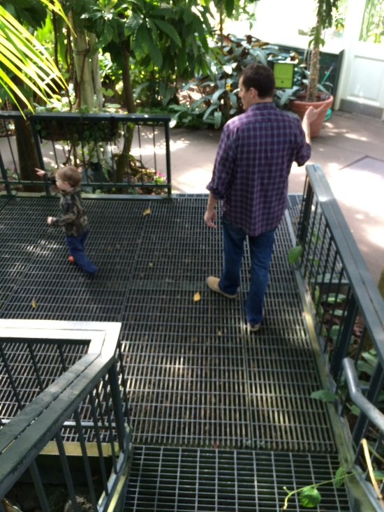 Son and grandson in a conservatory of the New York Botanical Garden:  son pointing finger one way and grandson pointing  finger the other way.