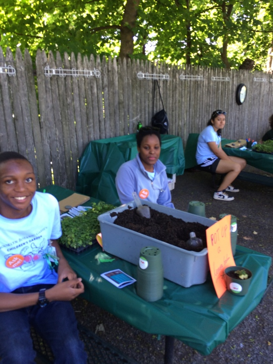 Staff in the Children's Garden offer lemon balm cuttings for potting up.