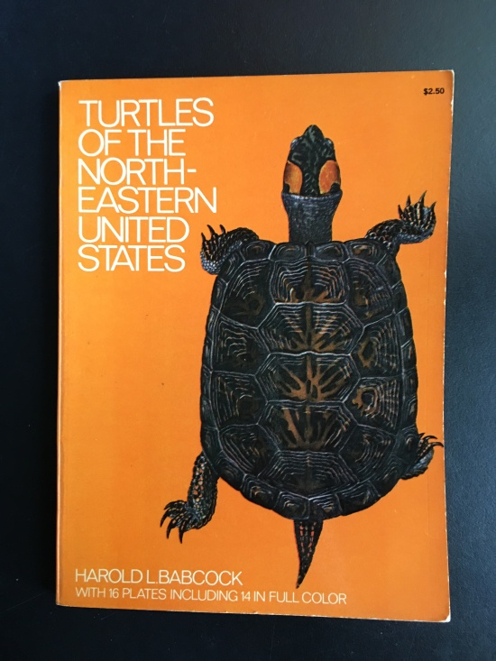 snapping turtle book
